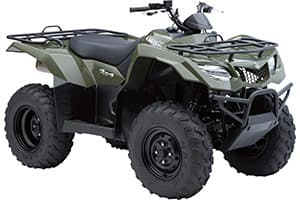 ATV Parts Connection WB-1108 Suzuki Quadrunner King Quad 300 400 Eiger 400 Quadmaster 500 Vinson 500 Front Left//Right Wheel Bearing Kit